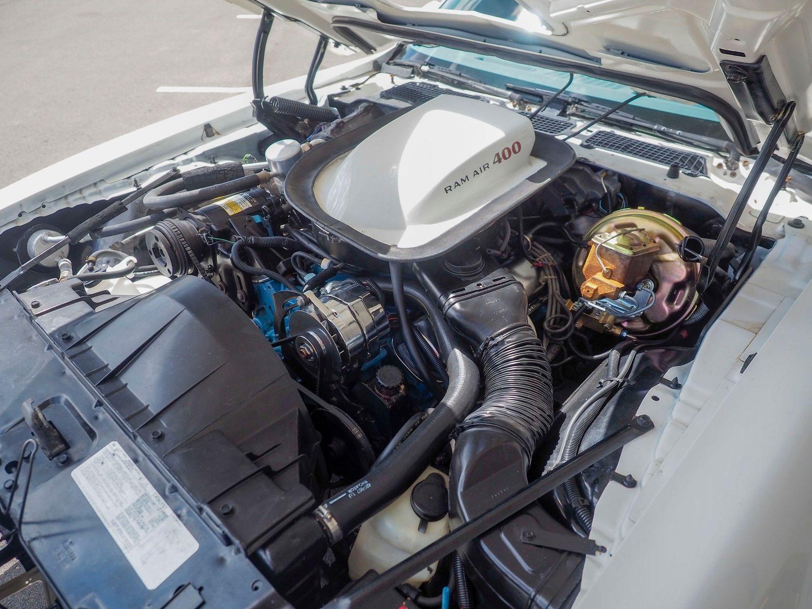1978 Pontiac Trans Am 19