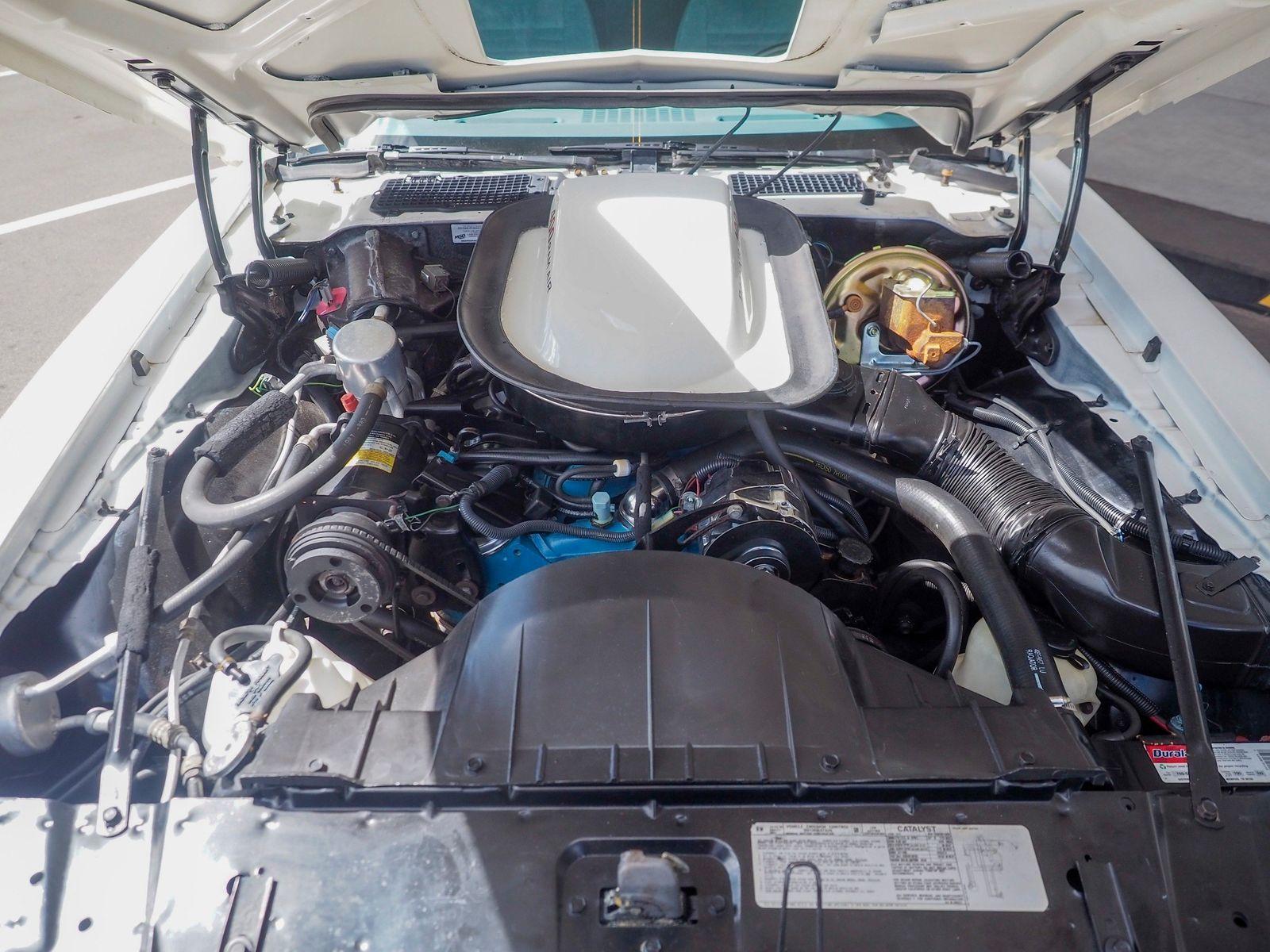 1978 Pontiac Trans Am 18